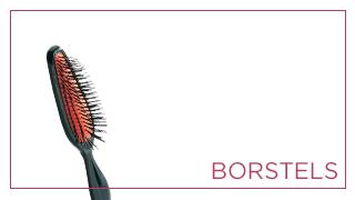 Borstels