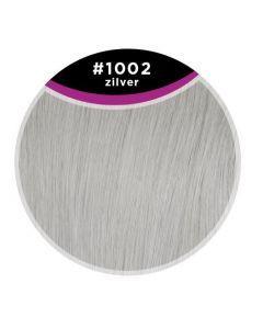 GH Extensions Kleurstaal 1002 Zilver