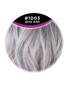 Great Hair Extensions - Kleurstaal 1003 Grey